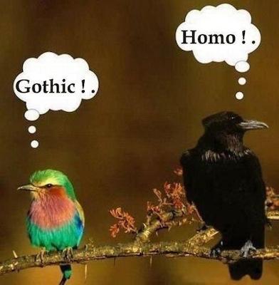 gothichomo